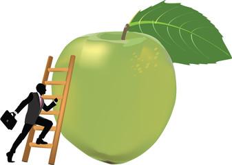 scalata della mela verde
