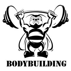 Bodybuilding, power lifting, concept