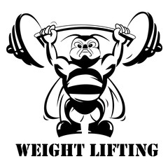 Weight lifting concept