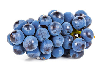 Blue grape