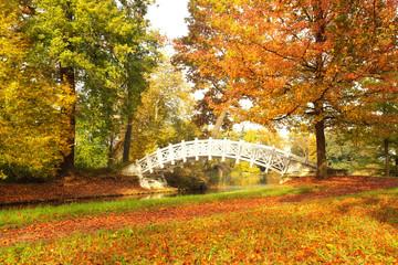 bunter  Oktober Tag im Park