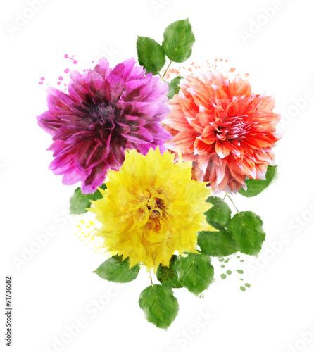 Deurstickers Dahlia Watercolor Image Of Dahlia Flowers