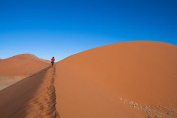 Duna nel deserto della Namibia