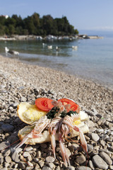 Closeup of fresh scampi - shrimps sandwich