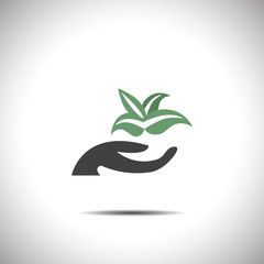 hand holding plant vector icon