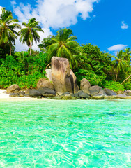 Paradise Seascape Beach