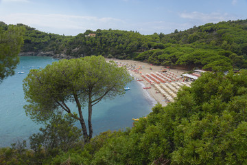 elba island (fetovaia beach)