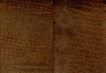 Set of brown crocodile leather texture