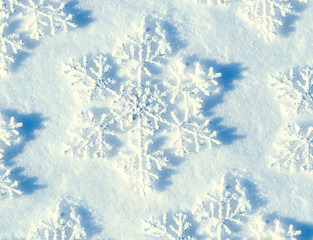 Winter Snow Background. Snowflake closeup