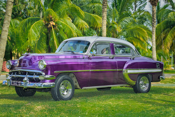 vintage beautiful classic car parked in tropical garden