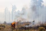 Wild Fire in Arizona - 71751167
