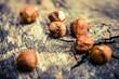 Hazelnuts on Aged Wood