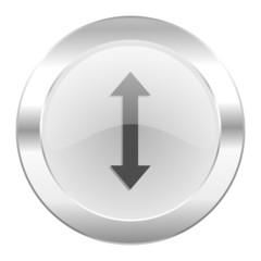 arrow chrome web icon isolated