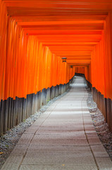 Fushimi Inari Taisha shrine in Japan © sylviaadams