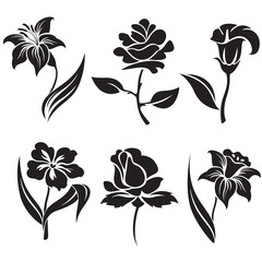 Vector set of black and white flowers.