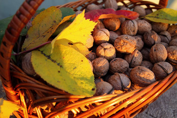 Walnuts in a basket and autumn leaves.