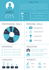 Resume template with infographics and icons. CV vector