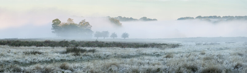 Panorama landscape of foggy Autumn Fall sunrise over frosty fiel