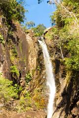 Jungle Scene Waterfall Divine