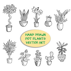 Hand drawn pot plants vector set