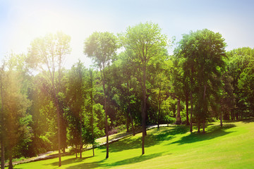 Beautiful park outdoors