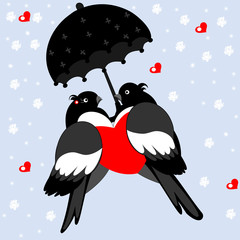 A pair of lovers bullfinches with heart and umbrella on a blue b