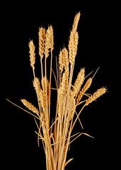 wisp of wheat