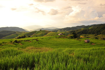 Rice Terraced Fields Landscape at Sunset