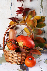 Pumpkins in wicker basket and leaves