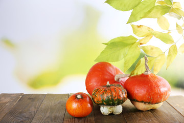 Pumpkins on wooden table on green branch background