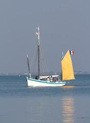 voilier ancien,île d'oléron,charente-maritime