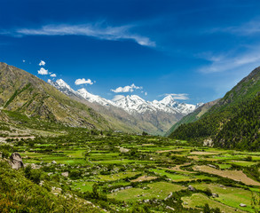 Valley in Himalayas