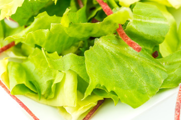 green salad on white background
