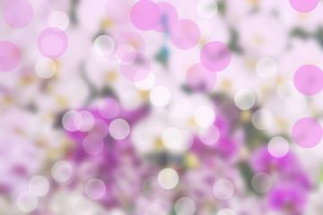 beautiful bokeh on white and purple background .