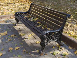Bench with fallen leaves in autumn park