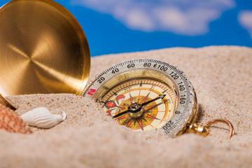 Sea Hedgehog shells  and compass on  sand