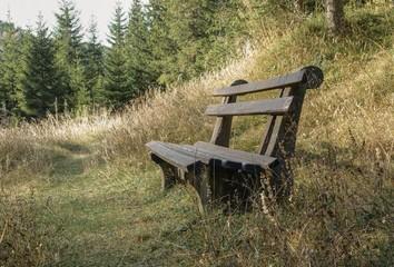 Holzbank an Waldlichtung