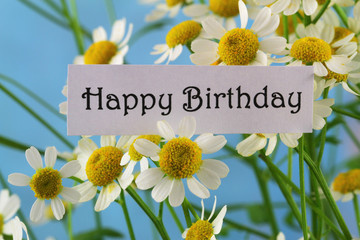 Happy birthday card with chamomile flowers