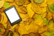 ebook reader lying on autumn leaves background