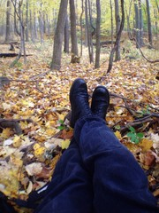 Resting From Autumn Walk