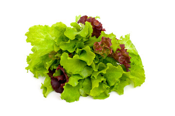 green and red lettuce