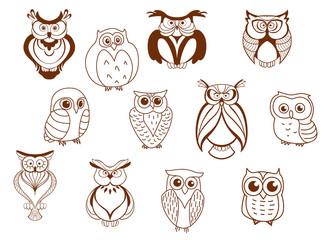 Cute cartoon vector owl characters
