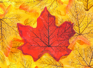 Fake fall leaves with a red leaf in the center