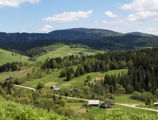 Small village in beautiful Carpathians, Ukraine