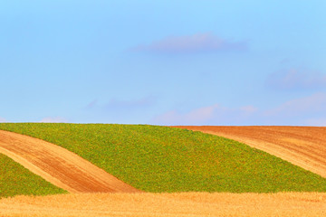 Farmer field background
