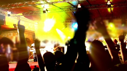 People dancing on a concert