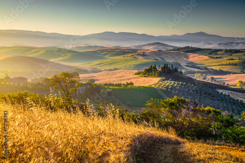 Scenic Tuscany landscape at sunrise, Val d'Orcia, Italy - 71796343