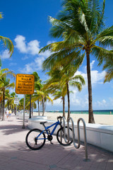 Turtle nesting beach, Fort Lauderdale, Florida USA