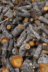 Oak Firewood Cut