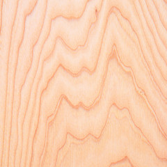 Detail of the board of ash after pretreatment